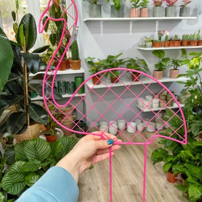 stabilizator do roslin flaming lola flora
